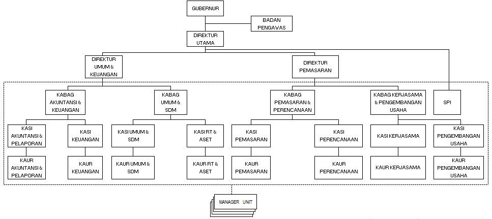Struktur Organisasi peraturan gubernur pdcmjt